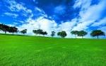 38-16 acres de terreno en venta. oportunidad de venta a corto—VENDIDO
