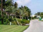 12-No realizar venta de terrenos en el centro de la Florida