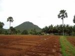 100-40 acres de tierra en bruto para la venta-VENDIDO