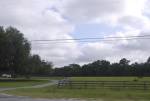 76-120 acres de tierra a un precio bajo (venta corta)-VENDIDO