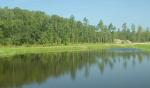 75-9.82 acres de tierra cerca de la autopista a la venta en la Florida-VENDIDO