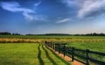 48-Hectáreas de terreno en venta en Milton, Florida—VENDIDO
